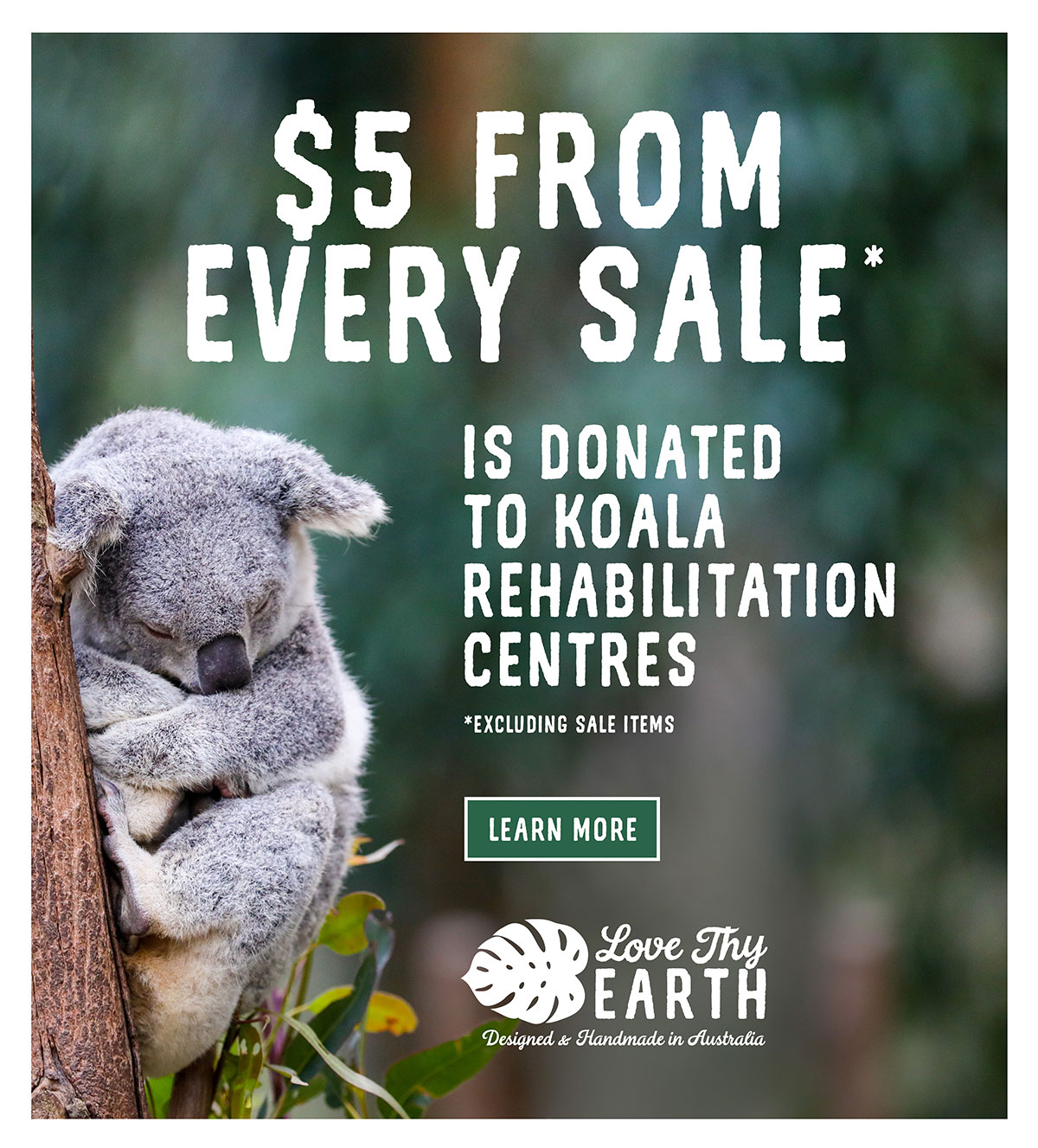 Learn more how we donate to Koala Rehabilitation